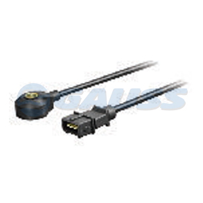 Sensor Denotacion Gauss SD-GS5577